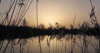 Hufeisensee Happinger Ausee Sundowner Februar 2021